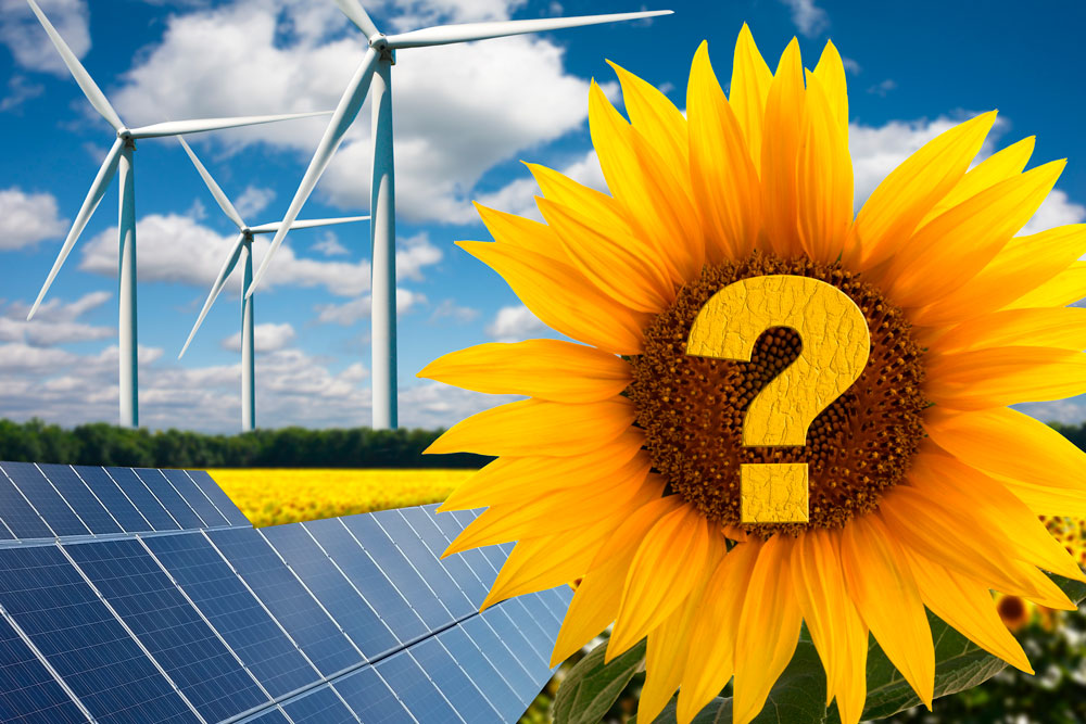 Energía 100% verde… ¿Verdad o Falso?